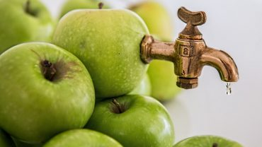 Malic Acid in apple